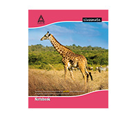 Classmate 172 pages FourLine notebook, 19*15.5 cm, hard cover